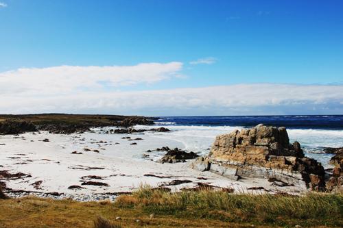 Bucht auf den Falklandinseln
