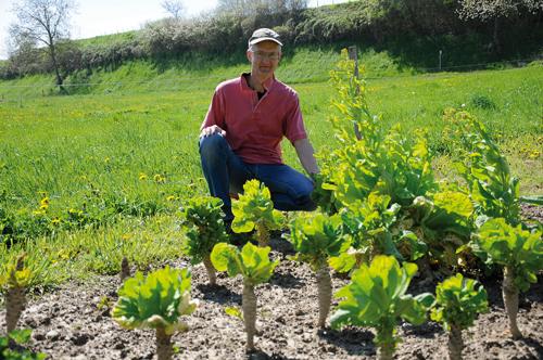 260 alte und seltene Sorten: Die Samen für seinen Online-Handel gewinnt Patrick Bilharz in seinem Garten in Eichstetten.