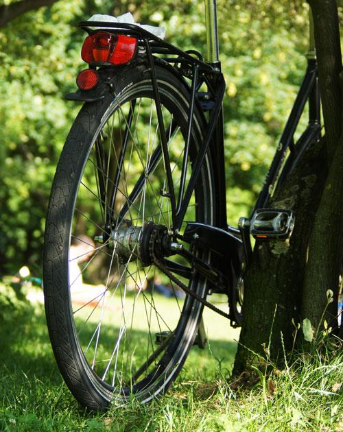 Out: Fahrräder kaufen