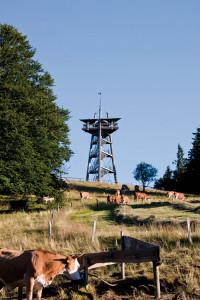 Schauinsland1
