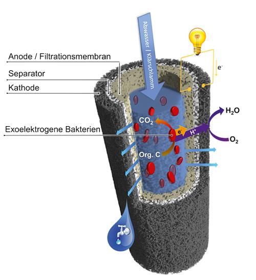 Danzers Erfindung schlägt zwei Fliegen mit einer Klappe: sie reinigt Abwasser und erzeugt dabei Strom.