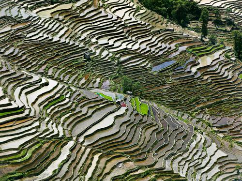 Viele der Luftaufnahmen wirken wie gewebte Muster. Die Zutat ist immer Wasser in irgendeiner Form.